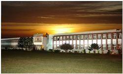 Sugarcane Breeding Institute