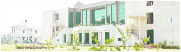 C.D.L. Institute of Management Studies