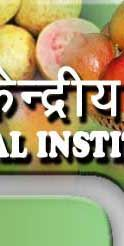 Central Institute for Subtropical Horticulture